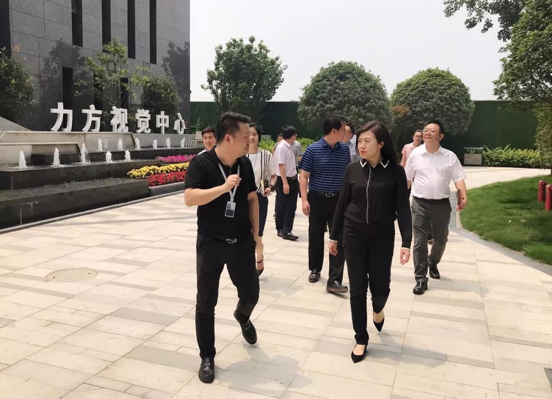 成都市委常委、宣传部部长田蓉等领导一行考察力方集团