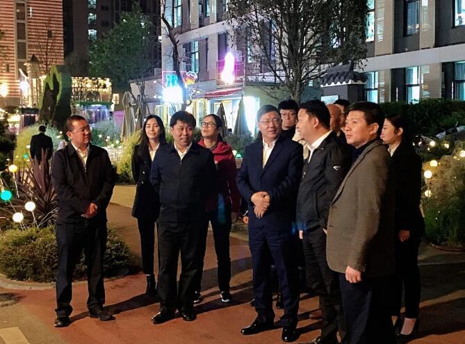 巴中市委副书记、市长何平一行视察枣子巷中医药特色街区